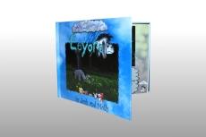 Eyore Book 1 improved