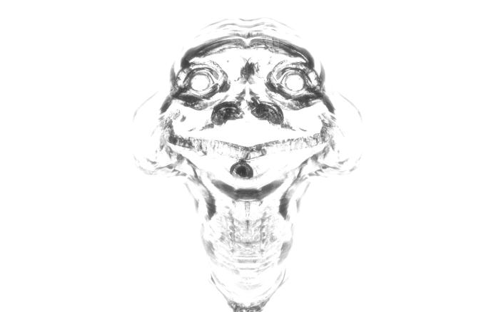 Glassy turtle