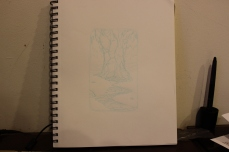 Day 12 sketch